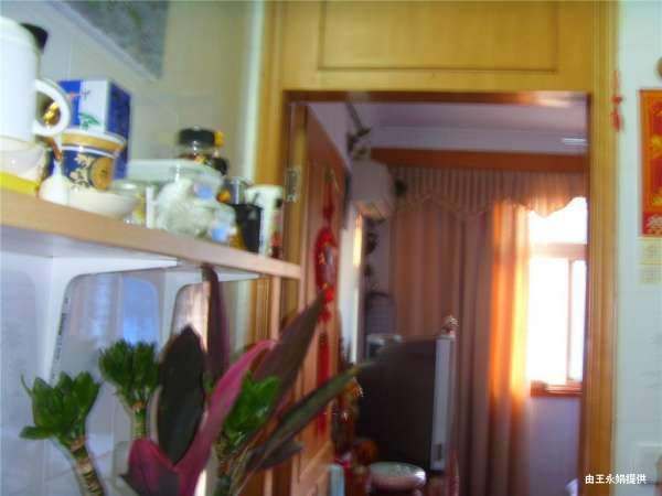 出售 崇明 崇明岛农场二手房 22万/套 45平米 - 新浪